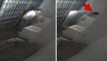El Chapo's Escape CAUGHT ON VIDEO