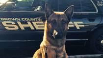 PGA Championship -- K-9 Down ... Sheriff's Dog Dies in Hot Car