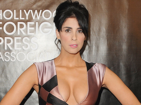 Sarah Silverman Flaunts Cleavage While Halle Berry Goes Sexy at Hollywood Foreign Press…