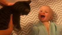 Adorable Baby -- Hysterically Laughs ... After Seeing Cat