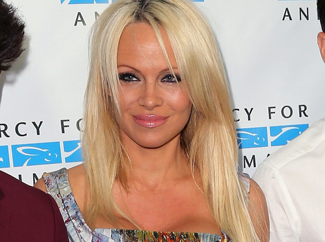 Pamela Anderson Hits the Red Carpet With Her Two Handsome Sons