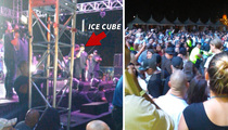 Ice Cube -- Pulls Plug On Concert After Fight Erupts
