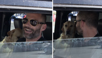 Seann William Scott -- Stifler's Lookin' Great!!! (VIDEO)