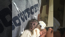 Dez Bryant -- Cops Aware of 'Alleged Illegal Possession' Of Monkey