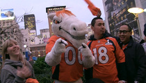 Miles the Broncos Mascot -- Peyton Will Retire ... If We Win the Super Bowl!!