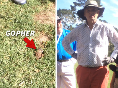 Bill Murray -- Taunted By Gopher ... 36 Years After 'Caddyshack' (VIDEO)
