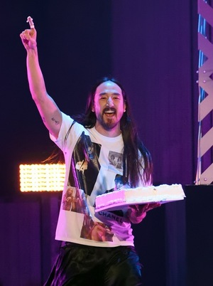 Piece of Cake -- Steve Aoki's Cake Photos