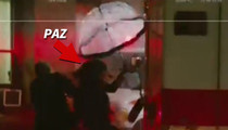 Paz de la Huerta -- Video Shows Actress Crushed in Ambulance Crash (VIDEO)
