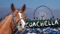 Coachella Party Village -- Leave Your Car ... Bring Your Own Horse