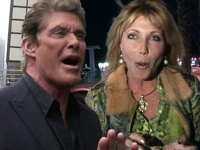 David Hasselhoff -- No More Alimony!!! I Want to Retire