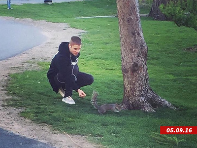 Justin Bieber -- Not Melting Down ... The Guy Just Likes Squirrels