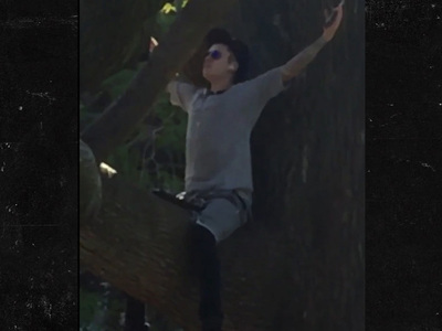 Justin Bieber Doing Something in a Tree ... That's It, Really (VIDEO)