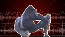 Cincinnati Zoo -- 911 Call ... 'My Son Fell In With a Gorilla!' (AUDIO)