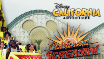 Disney Resorts Sued -- You Had a Loose Screw That Screwed Me Over Good