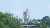Disney -- We Might Need Alligator Signs