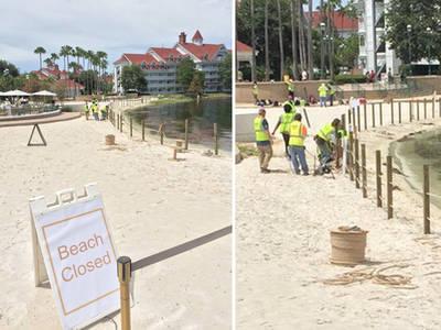 Disney Resort -- Building Fences After Alligator Attack (PHOTOS)