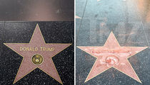 Donald Trump -- Cops Want Star Vandal Slapped with Felony
