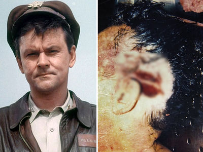 'Hogan's Heroes' Star Bob Crane -- Murderer to Be Revealed on Live TV (PHOTOS)