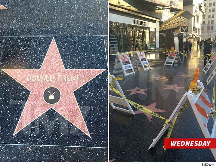 Donald Trump's Hollywood Star Gets Presidential Protection ...