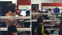 Justin Bieber -- Throwing Punches ... At a Boxer, Not a Fan (PHOTO GALLERY)