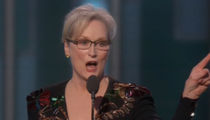 Donald Trump Fires Back at 'Hillary Flunky' Meryl Streep (VIDEO)