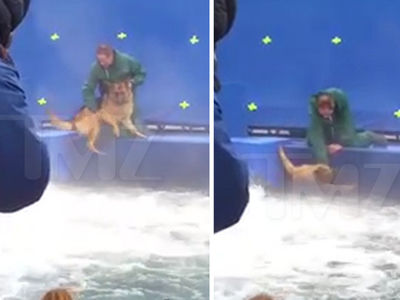 'A Dog's Purpose' Video Shows Terrified German Shepherd Forced to Film