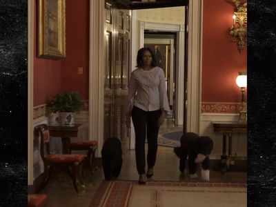 Michelle Obama Tries to Show Sunny's Not Vicious (VIDEO)