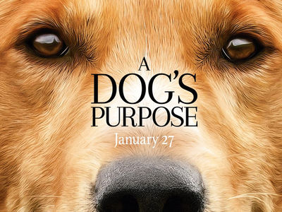 'A Dog's Purpose' Premiere Canceled