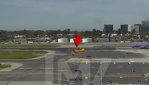 Harrison Ford, VIDEO of Taxiway Landing (VIDEO)