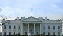 The White House, Another Fence Jumper Gets Caught ... Literally