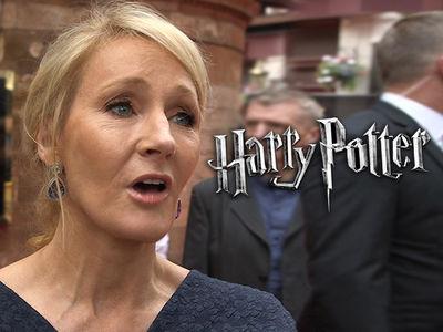 Harry Potter Prequel Stolen!! (PHOTO)