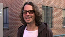 Chris Cornell Tribute Planned at Concert Soundgarden Was Headlining