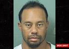 Tiger Woods Arrested for DUI in Jupiter, Florida, Blames Prescription Meds (MUG SHOT)