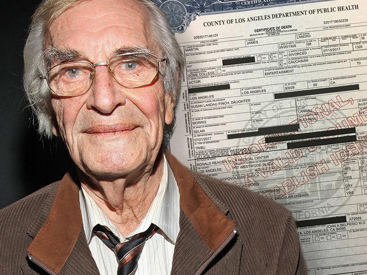 Martin Landau Died from Massive Internal Bleeding
