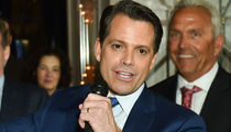 Anthony Scaramucci Can Turn White House Debacle into $75k Speaking Engagements
