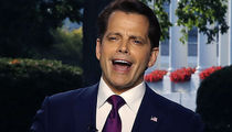 Anthony Scaramucci Audio of 'Insane' White House Leaks Interview Released