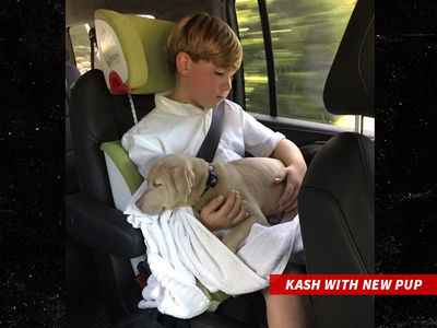 Kim Zolciak Surprises Son Kash with Puppy 3 Months After Dog Attack