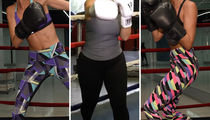Hollywood Knockouts -- Guess the Boxing Babes!