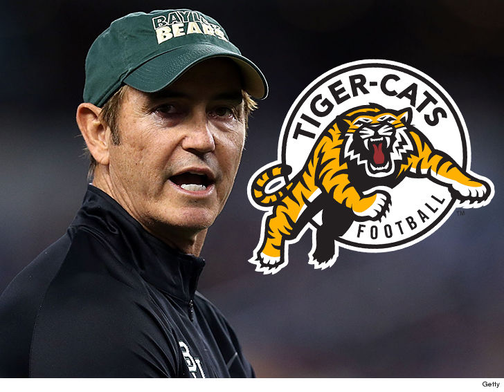 CFL Team Blasts Art Briles Hiring 'Large and Serious Mistake'