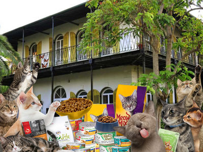 Hemingway Home Cats Won't Starve Post-Irma on 4-Week Supply of Chow
