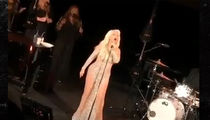Christina Aguilera Performs at Star-Studded, Million Dollar Wedding for Real Estate Tycoon