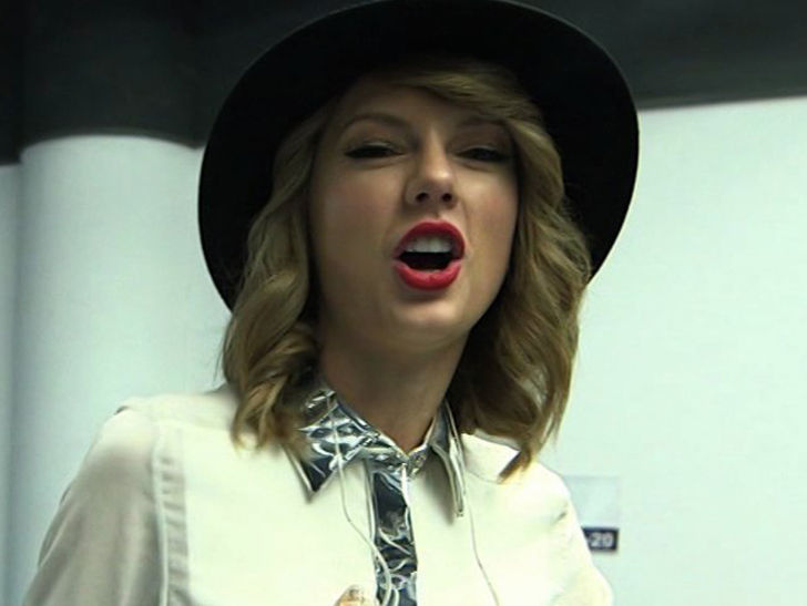 Taylor Swift Sued Over 'Shake it Off,' You Ripped Off 'Hater's Gonna Hate!!!'