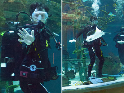 Mark Wahlberg Goes Scuba Diving in Awesome New Aquarium