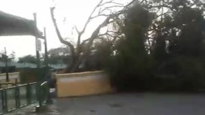 UFC Fighter Angela Magana Shows Devastation from Hurricane Maria