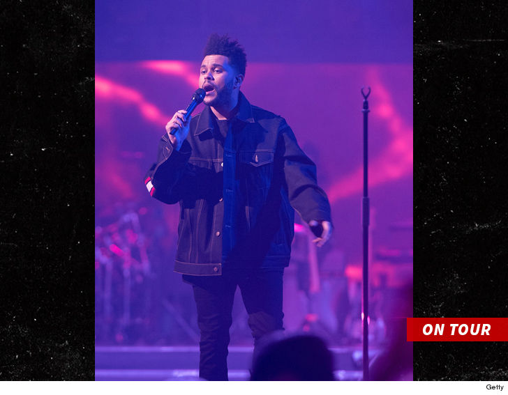 Two Members of the Weeknd's Tour Staff Are Being Investigated For Rape
