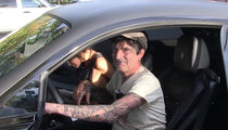Tommy Lee and GF Brittany Furlan Reveal Truth About 'Mile High Club'