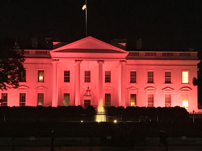 White House Lights Up in Pink to Kick Off Breast Cancer Awareness Month