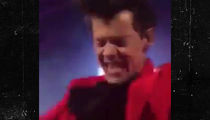 Harry Styles Gets His Crotch Grabbed by Overzealous Fan While Onstage
