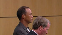 Tiger Woods Pleads Guilty at DUI Hearing