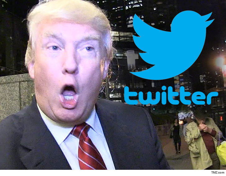 Trump's Twitter back after interruption